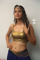 Malvika Raaj in Golden Choli and Skirt at Jayadev Pre Release Function 2017 ~  Exclusive 048.JPG