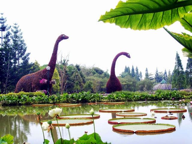 Tempat Wisata Di Bandung Taman Bunga Nusantara Cianjur