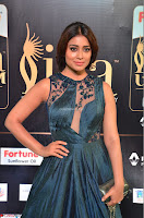 Shriya Saran in Beautiful Transparent Dark Gown IIFA Utsavam Awards 2017 071.JPG