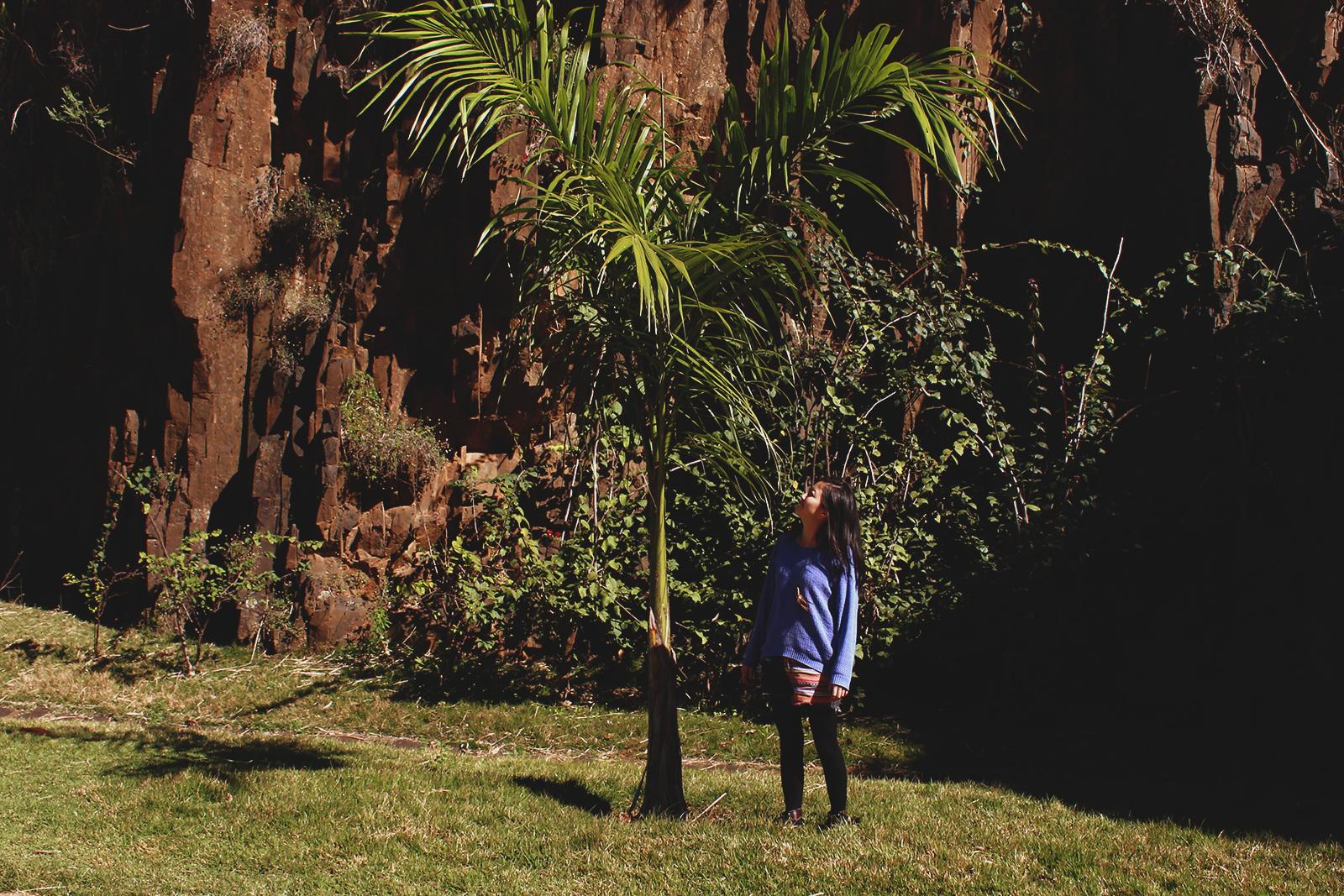 árvore e menina