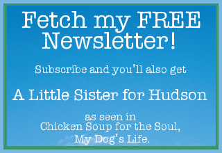 Subscribe to Fetch! the newsletter