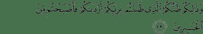 Surat Fushshilat ayat 23