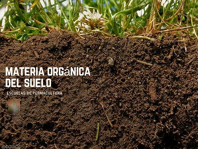 La materia orgánica del suelo son microbios, proporciones adecuadas de nutrientes para construir más diminutos cuerpos celulares.