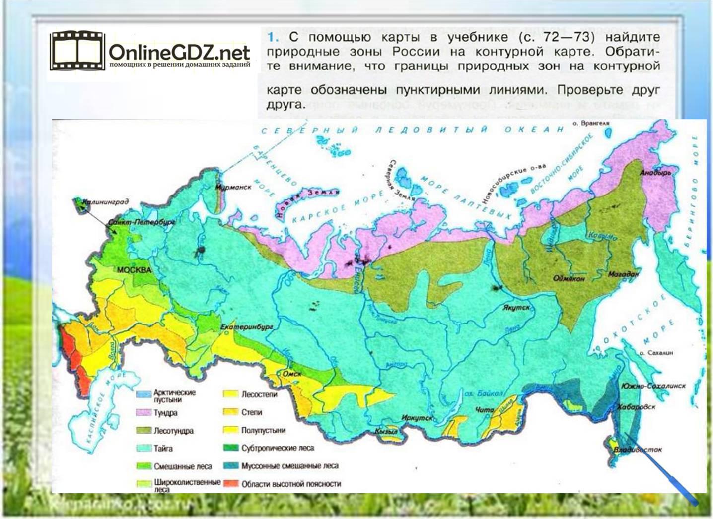Картинка карта природные зоны россии