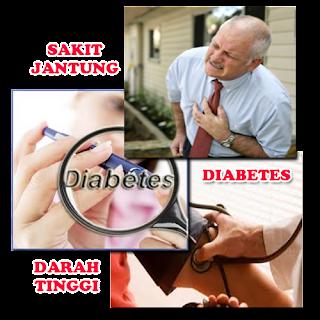 Penyakit Darah Endapan Lemak Pembuluh Nadi