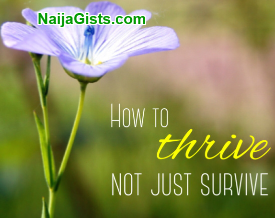 how to thrive