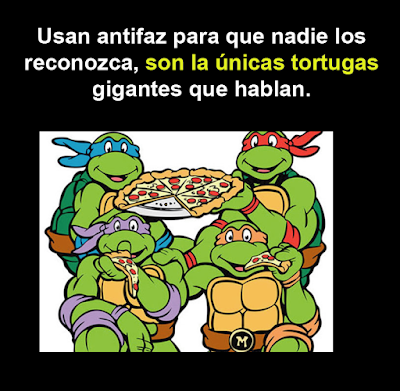 La lógica de las caricaturas las tortugas ninja