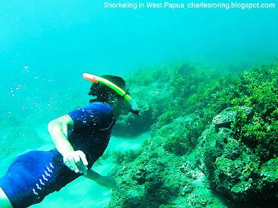 Charles Roring was snorkeling in coral reef of Manokwari