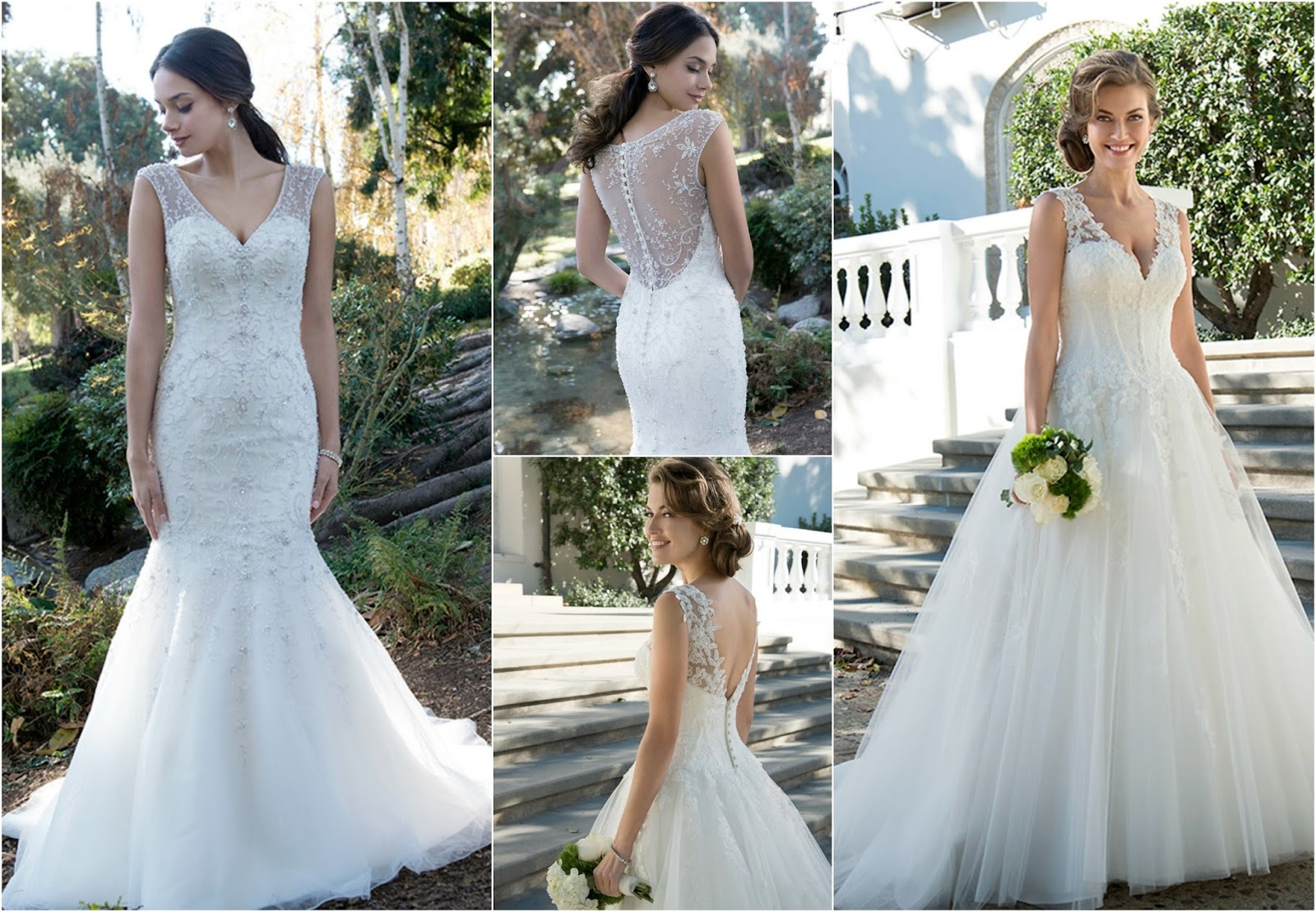 Venus Bridal Timeless Beauty