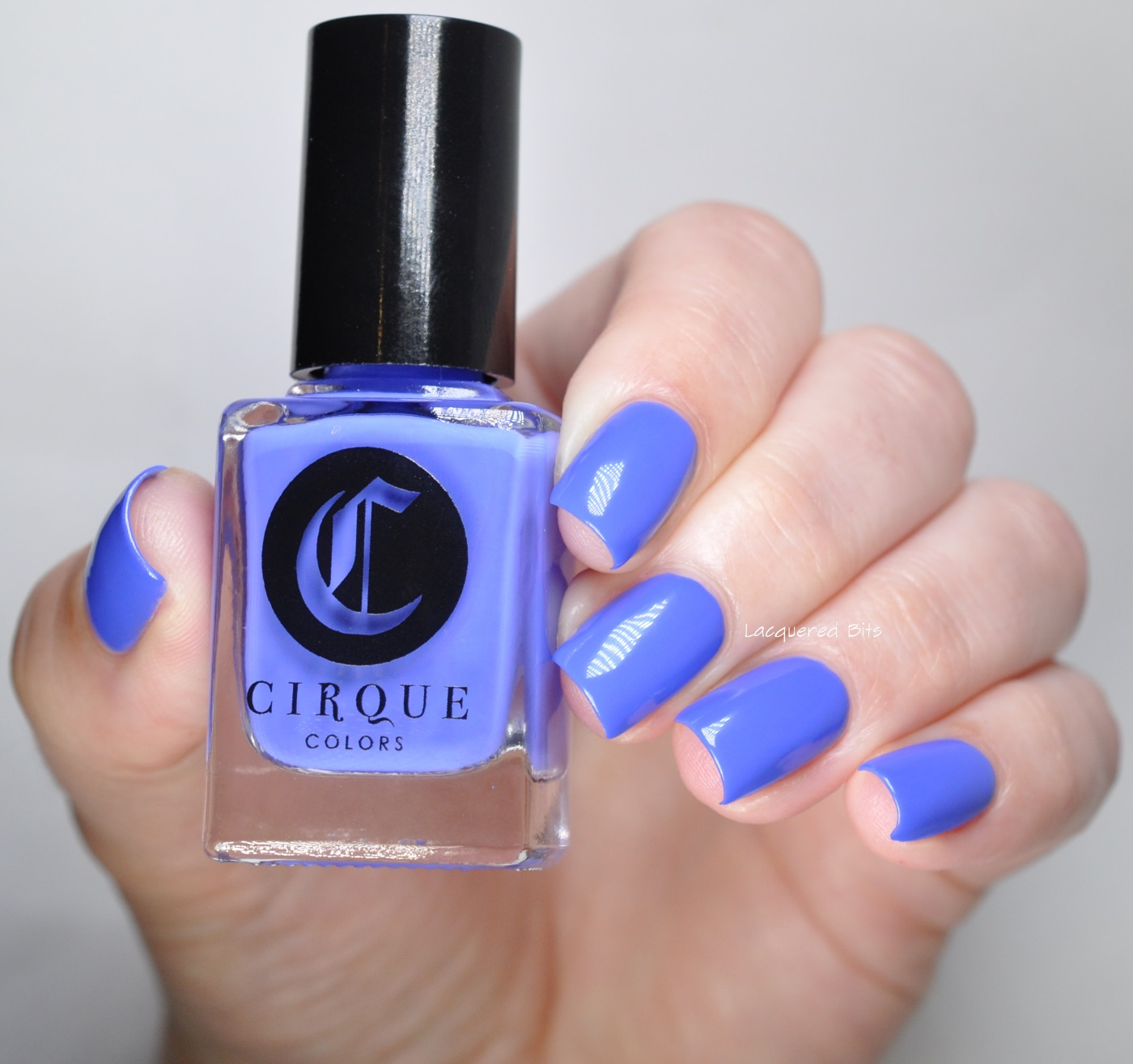 Rehab Cirque Colors Vice 2016 Collection