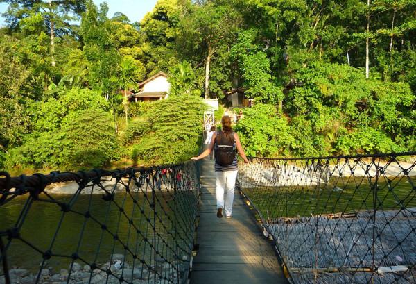 Bukit Lawang di Sumatera Utara