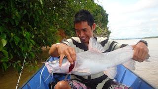 Umpan-Memancing-Ikan-Baung-Sungai