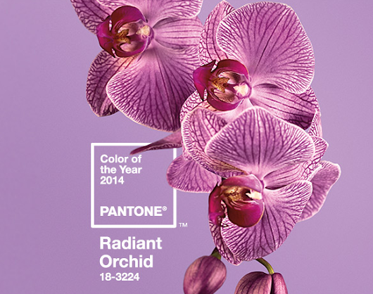 R is for Radiant Orchid