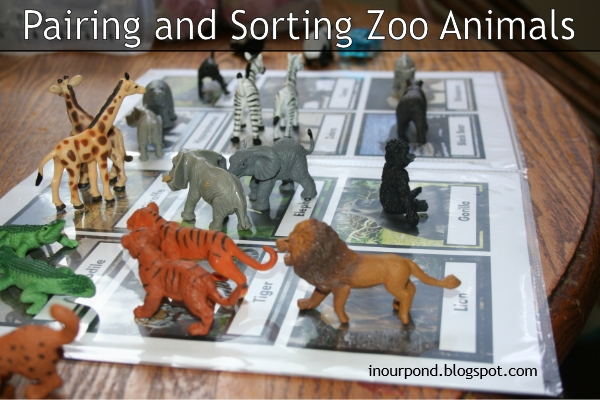 FREE 3-Part Safari Ltd Wild Animals Toob from In Our Pond
