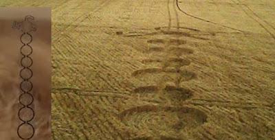 AGROGLIFO SURGIU NA ARGENTINA