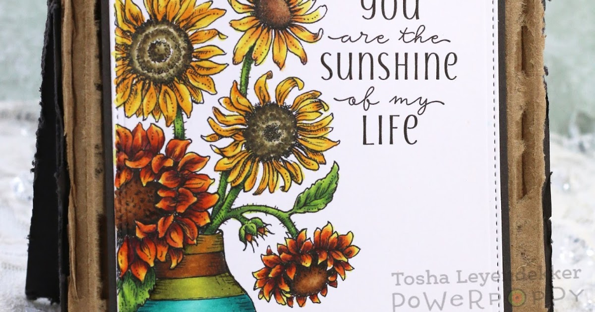 Sunshine Are Sunshine Pages Only Coloring My You My