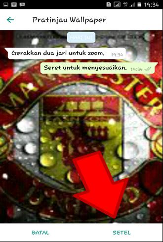 Pratinjau Tema Whatsapp