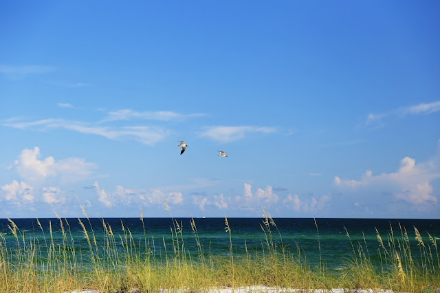 Chicken_Bone_Beach_Pensacola_FL_Gulf_Of_Mexico