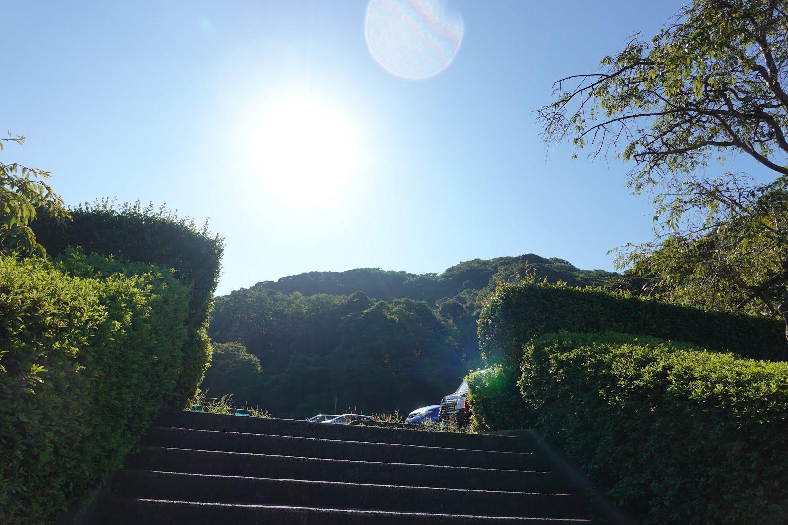 今日の散歩道フォトライブラリー: 2020 08 29 湊山公園