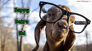 bakra eid greetings images