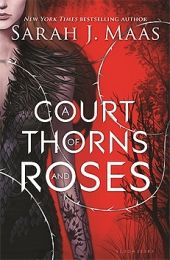 Books to read summer 2015: A Court of Thorns and Roses