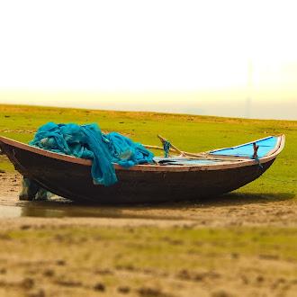 Boat | field