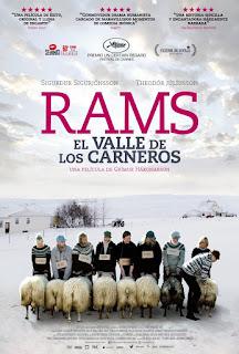 Rams, El valle de los carneros, Grímur Hákonarson