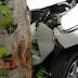 Kode Alam Mobil Menabrak Pohon Sabtu 2 Desember 2017