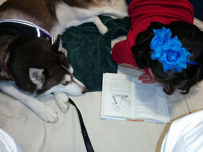 Pet Therapy program tips. Therapy dog handler, Therapy animal programs. Therapy dogs