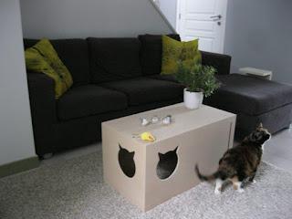 Мебель и кошки – тандем релаксации