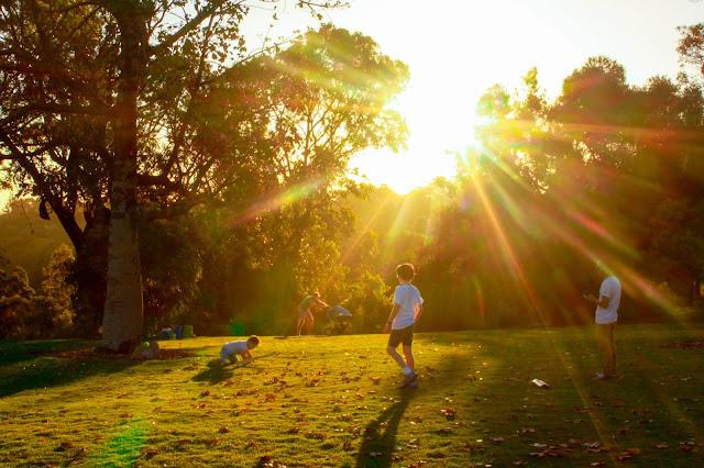 King's Park @ Perth, Western Australia 国王公園 澳洲 澳大利亞 西澳
