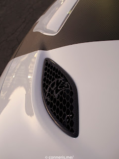 Custom Dodge Charger Hellcat Vents