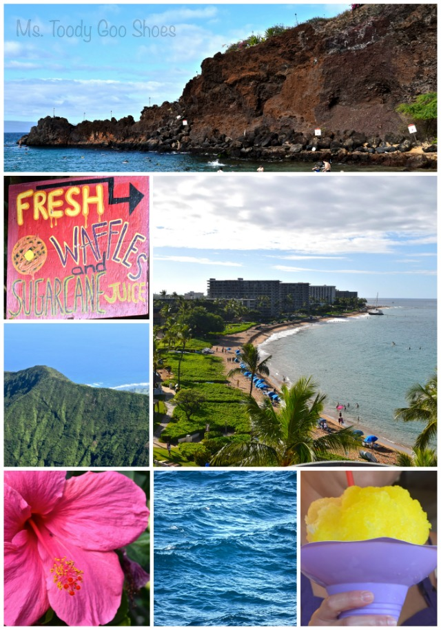 Maui - - - Ms. Toody Goo Shoes