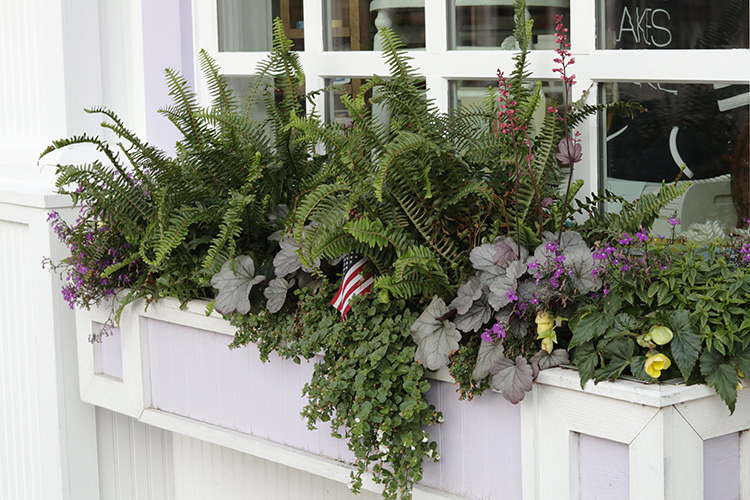 Window Box Inspiration In All Shapes
