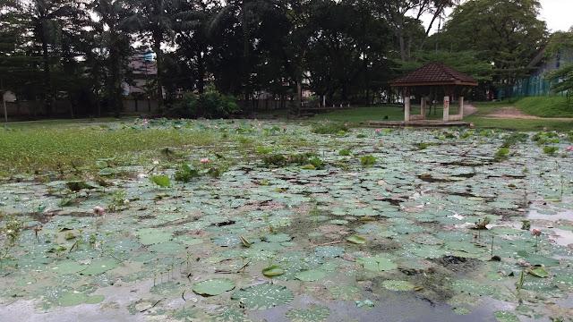 Taman Tasik Medan Idaman