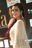 Prajna Actress in backless Cream Choli and transparent saree at IIFA Utsavam Awards 2017 0062.JPG