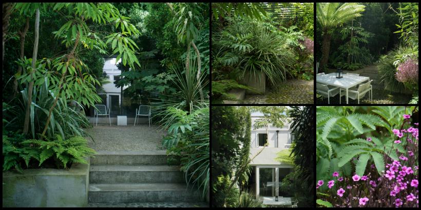 Jard n peque o plantas grandes el ex tico jard n urbano for El jardin urbano