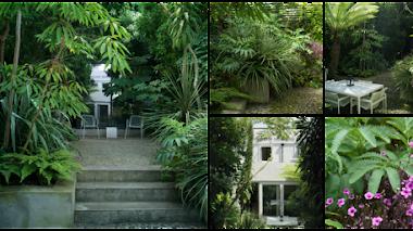 Jardín pequeño, plantas grandes. El exótico jardín urbano de Bernard Hickie en Dublín