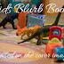 Kids Blurb Books - Phantom Limbs