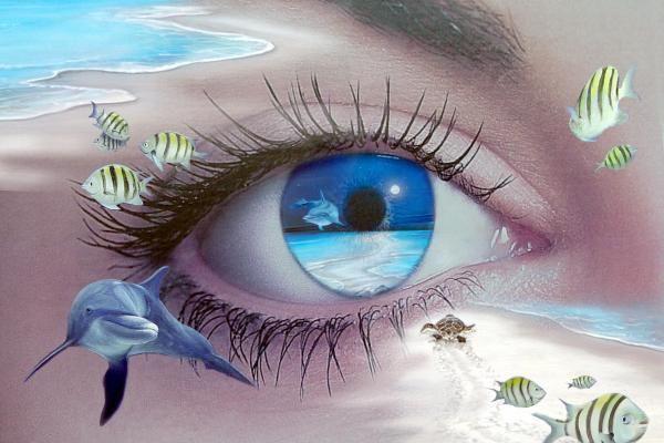 facts     : Ocean Blue Eyes