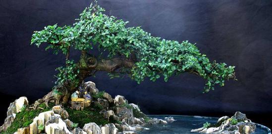 Pernahkah anda melihat miniatur tanaman beserta tambahan elemen Cara Membuat Bonsai Penjing Penuh Imajinasi