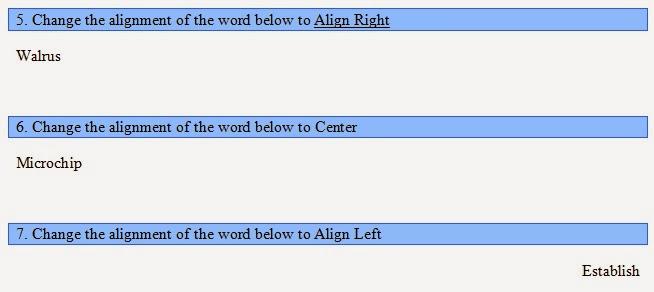 teacher dude microsoft word basic test self grading