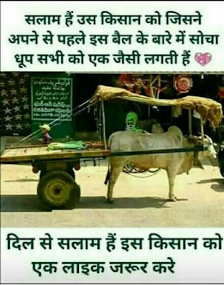 whatsapp group dp creator: Dhoop Sabhi Ko Ek Jaisi Lagti Hai