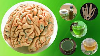 plantas medicinales para aumentar memoria