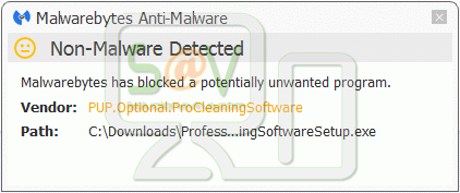 PUP.Optional.ProCleaningSoftware