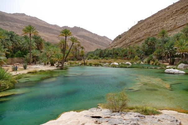 Wadi, Wadi Bani Khalid, Oman, Wasser, Palmen, Oase, Berge