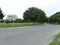 花博記念公園鶴見緑地 大芝生