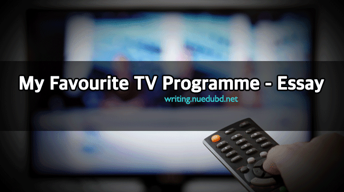 essay about tv programmes