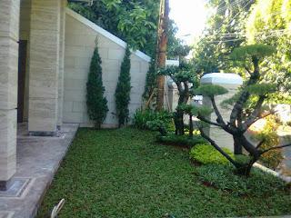 Tukang taman untuk rumahan | jasa pembuatan taman indoor dan aout dor |solusi taman anda