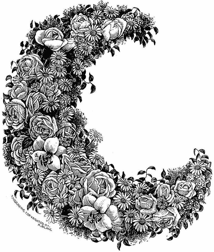an 1888 dried floral arrangement from a catalog, in a moon crescent shape